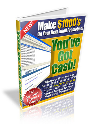 Product picture *New* Make $1000 on your Next email promotions(with PLR)